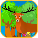 forest_icon_512_A.png