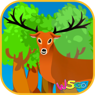 forest_icon_512_A