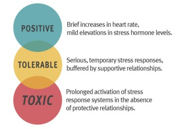 Three-Types-of-Stress-768x549