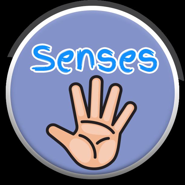 HealthSeasons_Buttons_0000s_0001_Vector-Smart-Object